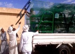 """محافظ شمال سيناء يوضح سبب اختيار """"اللون البيج"""" لطلاء الواجهات"""