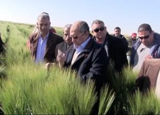 وزير الزراعة يأكل خس وطماطم من مزرعة المليون فدان
