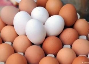 لماذا سعر البيض الأحمر أغلى من الأبيض وما الفرق بينهما؟