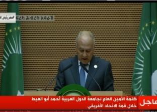 أبو الغيط: أثق في نجاح مصر.. وسنبارك للرئيس السيسي العام المقبل