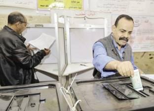حكم بإعادة الانتخابات في الدائرة الأولى بالدقهلية ورفض باقي طعون المرشحين