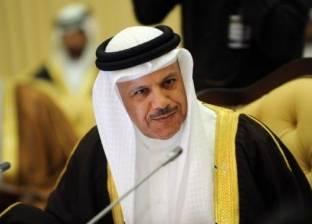 التعاون الخليجي: من الضروري توفير الحماية للشعب الفلسطيني