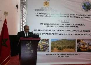 أبو ستيت: التركيز على إنتاجية الزيتون سبب عجز بعض الدول عن المنافسة