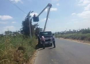صيانة شاملة لكشافات الإنارة على الطريق السريع بكفر البطيخ
