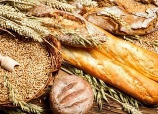 """""""أنصار حقوق الانسان"""" بالإسكندرية تطالب بمنع استيراد القمح المصاب بفطر الإرجوت"""