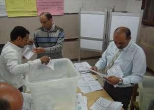 """الإعادة بين 8 مرشحين في دائرة أشمون.. وتقدم """"حب مصر"""""""