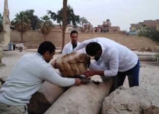 بدء أعمال ترميم تمثال رمسيس الثاني بمحافظة سوهاج