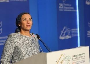"""""""البيئة"""": اختيار مصر وألمانيا لإدارة مفاوضات تغير المناخ"""