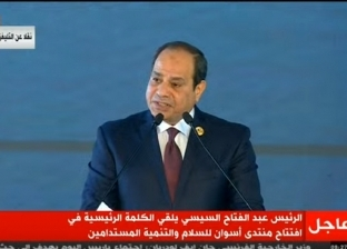 أكد عليه السيسي.. إنعاش اقتصاد تشاد يدعم أمن مصر