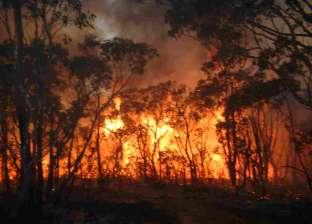 اليونان تعلن سيطرتها على حرائق الغابات شمال العاصمة أثينا