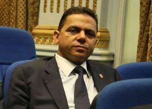"""برلماني: منع تداول الدواجن """"مسكن"""" لا يحد من انتشار إنفلونزا الطيور"""