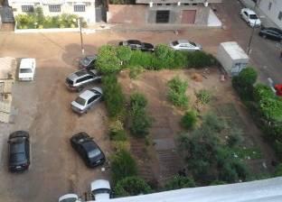 هطول أمطار خفيفة على مدينة أسوان.. والمحافظة تعلن عن استعداداتها