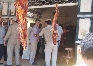 إعدام 100 كيلو أسماك مجمدة فاسدة بمنوف في المنوفية