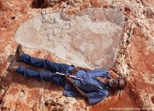 علماء يعثرون على أكبر أثر لقدم ديناصور في العالم