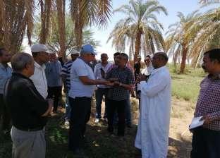 محافظ الوادي الجديد يوجه بطرح أرض بئر الصحاري بالداخلة للإيجار