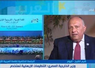 شكري: دول العالم لم تتعاطف مع مصر ضد الإرهاب مثل تعاطيها مع باريس
