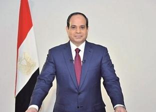 دبلوماسي سابق: السيسي يسعى لتكامل عربي أفريقي