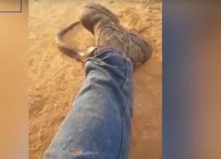 بالفيديو| صياد يطلق كلابه لاصطياد أفعى قاتلة فتهرب وتدخل بنطاله