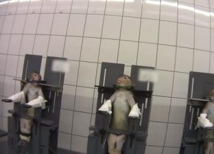 """فيديو """"مرعب"""" من داخل مختبر للسموم: القرود تصرخ ألما والكلاب تنزف"""