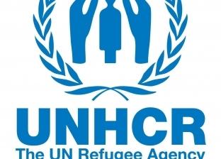 """""""مفوضية اللاجئين"""": إجلاء 325 مهاجرا من مركز احتجاز جنوب طرابلس"""