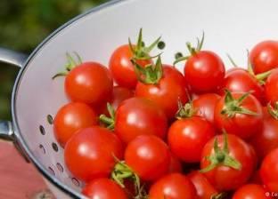 بالصور| أفضل الطرق لحفظ الخضراوات والفواكه
