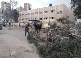 بسبب سوء الطقس.. إصابة 9 أشخاص بحادث إنقلاب سيارة في كفر الشيخ