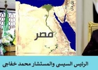 نائب رئيس مجلس الدولة: السيسي أنقذ الشخصية المصرية من الانهيار والفوضى