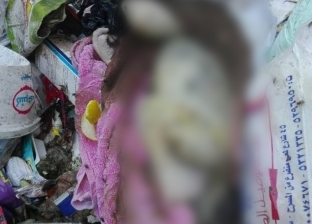 العثور على طفلة رضيعة في أكوام القمامة بمنطقة الجمهورية بالمحلة