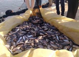 مركز الدراسات الاقتصادية: مصر العاشرة عالميا في إنتاج الأسماك