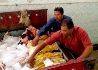 ضبط 500 كيلو لحوم فاسدة قبل بيعها بالأسواق في الفيوم