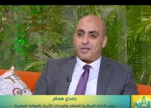 همام: استخدام أجهزة حديثة للكشف عن الآثار المصرية لمنع تهريبها خارج البلاد