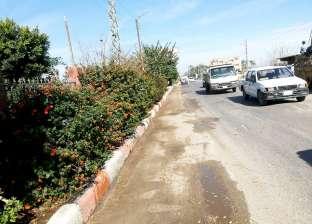 محافظ سوهاج: استمرار أعمال نظافة وتجميل شوارع المراغة