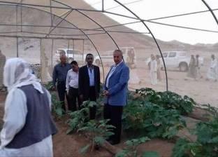 محافظ البحر الأحمر يتفقد المشروعات الزراعية في مدينة الشلاتين