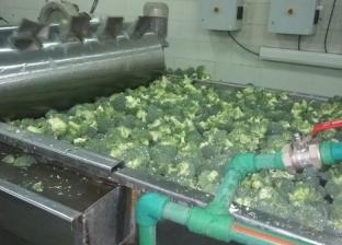 «مراقبة الأغذية» تعدم 1185 لتر زيت طعام ونصف طن أغذية فاسدة بالشرقية