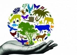 كيف يوثر التنوع البيولوجي على القطاعات المختلفة؟