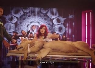"""جمعية لـ""""الرفق بالحيوان"""": ما حدث للأسد بكليب بشرى مأساة.. و""""القطة كانت مرعوبة"""""""