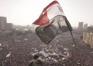 سالم: ثورة 30 يونيو أنقذت الوطن من الغرق في مستنقع الجماعات الظلامية