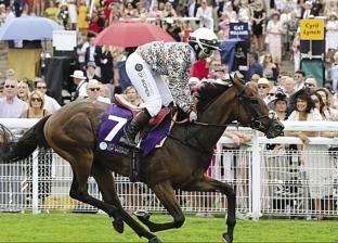 خديجة صلاح.. أول بريطانية مسلمة تفوز فى سباق خيول خيرى