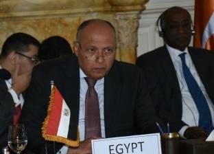 """وزير الخارجية: تحضيرات لـ""""القاهرة 3"""" بشأن سوريا و""""ثلاثي"""" مع إثيوبيا والسودان"""
