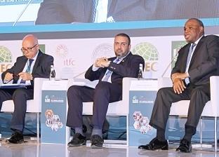 """""""الاستثمار"""" تستعرض جهود مصر لإشراك القطاع الخاص في تنمية أفريقيا"""