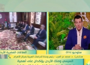 محمد عز العرب: قمة السيسي والملك عبد الله ركزت على القضية الفلسطنية