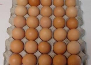 """""""غرفة القاهرة"""": 5 بيضات تراجعا في نصيب الفرد خلال 5 سنوات"""