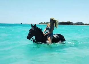 بالصور.. رواج سياحة الخيول على شواطئ الغردقة