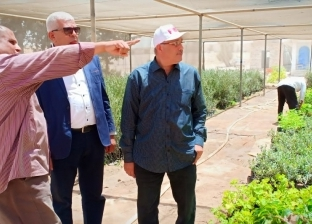 دعم 110 مزارع نموذجية في مطروح بمستلزمات ومبيدات زراعية