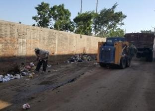 بالصور| حملات نظافة في 12 قرية بدسوق بمشاركة المجتمع المدني بكفر الشيخ