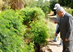 محافظ أسوان يعد بتطوير الحديقة الاستوائية الدولية