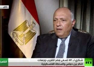 وزير الخارجية: حل أزمة قطر يعتمد على استجابتها لمطالب دول المقاطعة