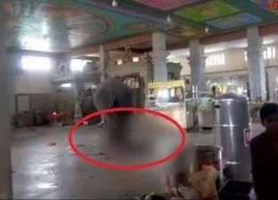 بالفيديو  فيل غاضب يدهس رجل حتى الموت بطريقة وحشية
