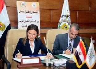 """""""الاستثمار"""" و""""الإحصاء"""" يتعاونان لرصد مشكلات الشركات الناشئة في مصر"""