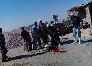 احتفالا ببناء مدرسة جديدة.. أهالي قرية بقنا يذبحون خروفين